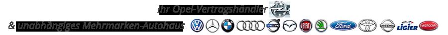 Mehrmarken-Autohaus