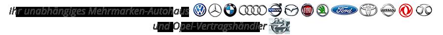 Händler für VW Mercedes BMW Audi Volvo Toyota Hyndai Skoda Fiat Ford Nissan und Vertragshändler für Opel